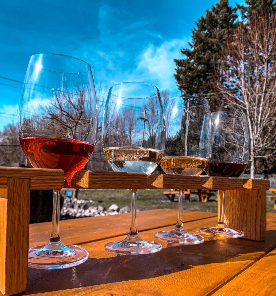 Flight of wine on picnic table